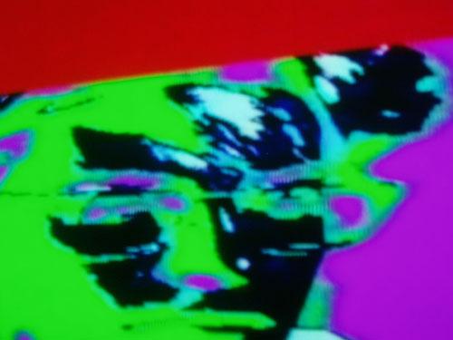Image: stanza portrait 1985. video still.